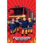 Fireman Sam  Lootbags (pack&nbsp;quantity&nbsp;8) 