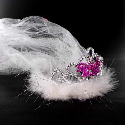 Bride To Be Tiara & Veil