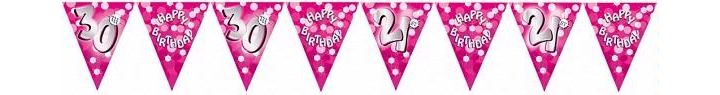 Sparkle Pink 30th Bunting