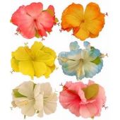 6assorted Hibiscus Flower Hair Clip