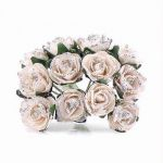 Silver Tea Rose (pack quantity 24)