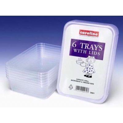 500ml Plastic Trays & Lids (packquantity6)