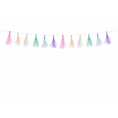 Assorted Colours Tassel Garland